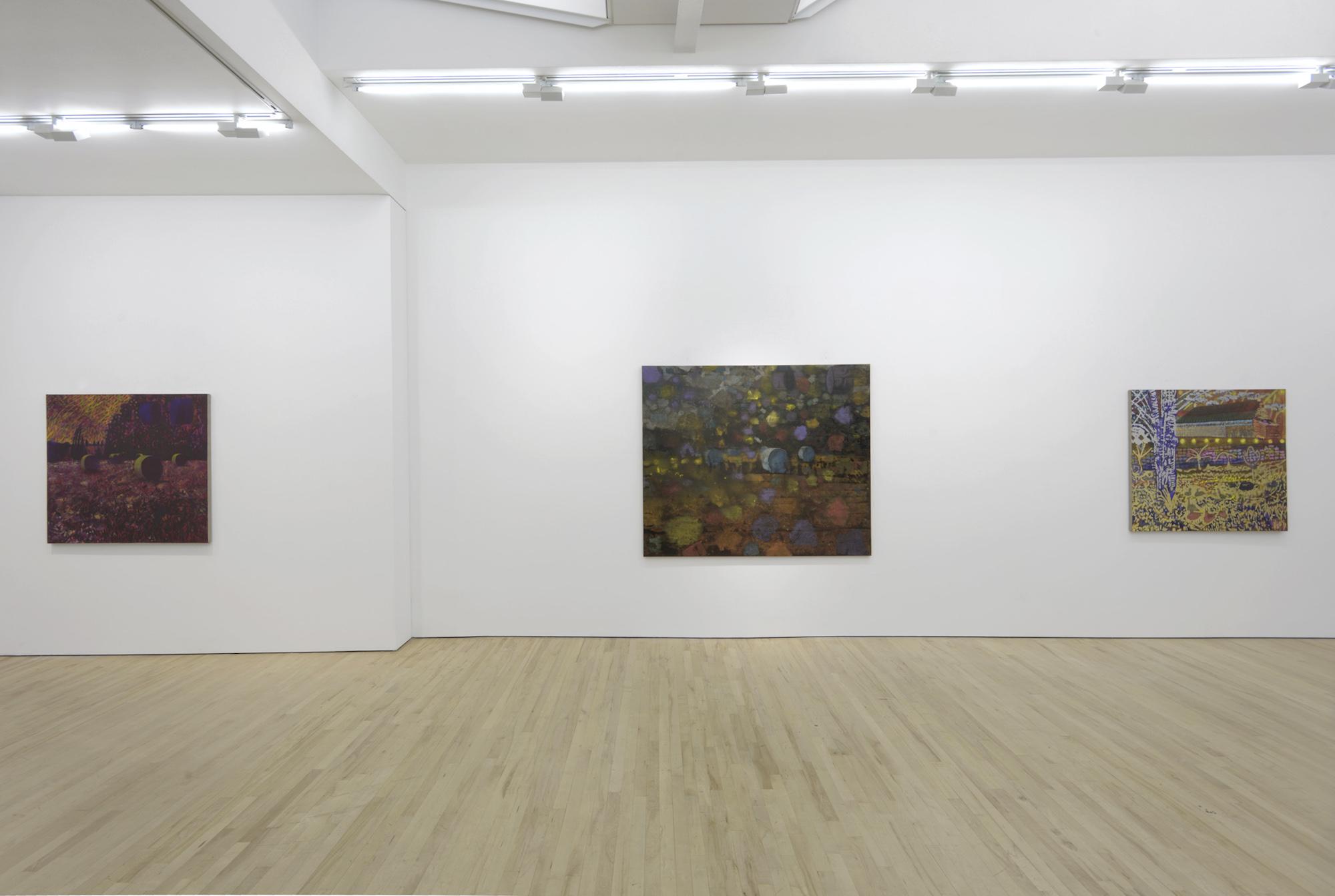 3 - David Brian Smith at Carl Freedman London