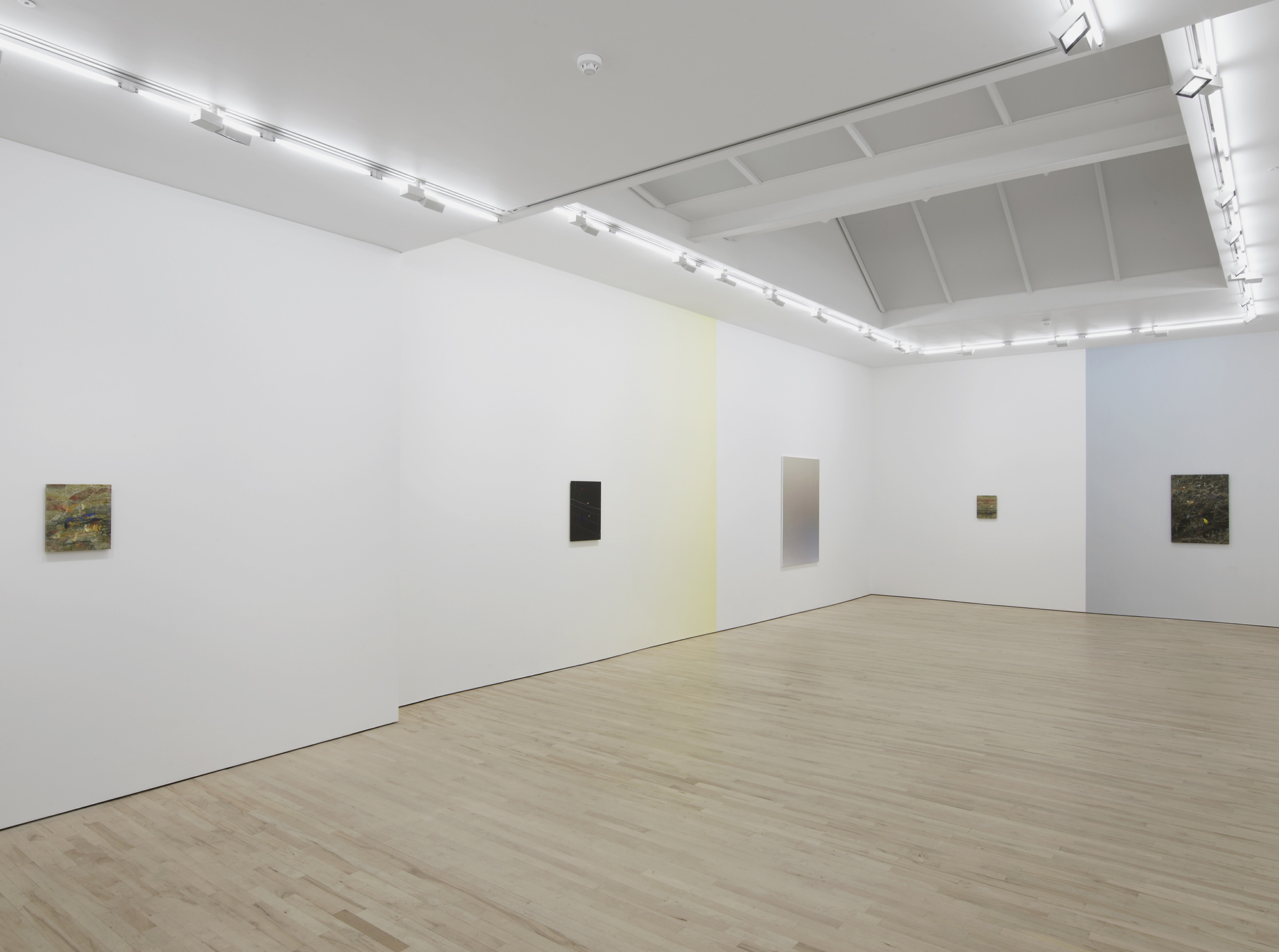 3 - Pieter Vermeersch at Carl Freedman Gallery London