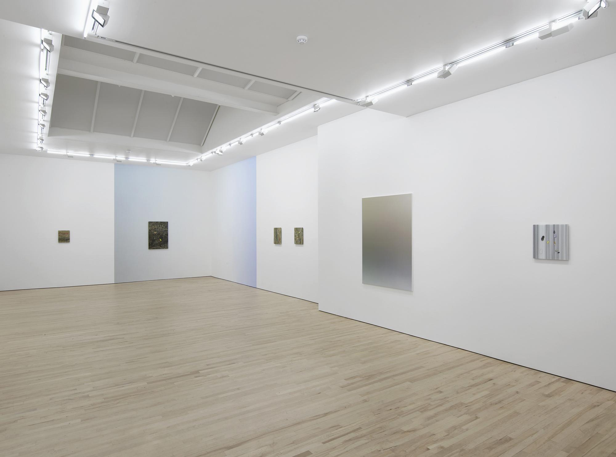 4 - Pieter Vermeersch at Carl Freedman Gallery London