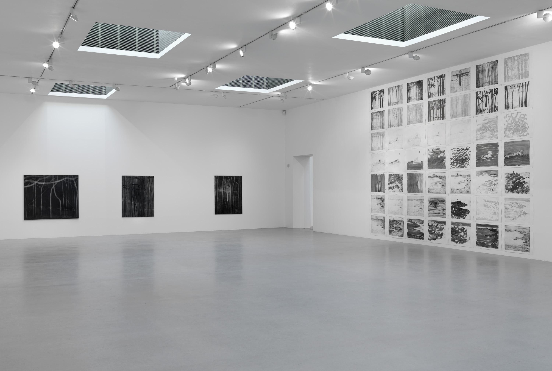 4 - Silke Otto-Knapp at Camden Art Center London - 14.02.2014 copia
