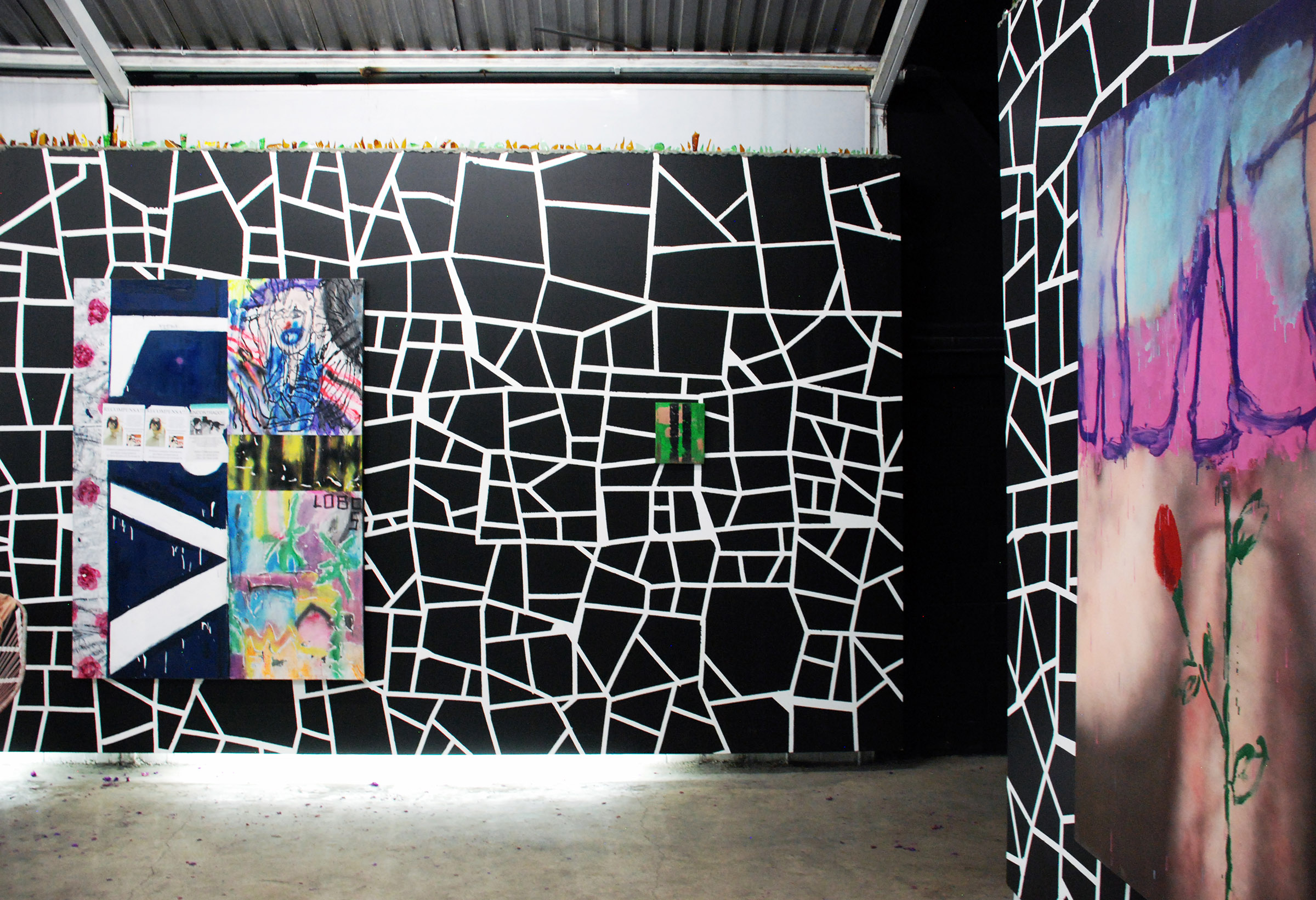 9 - Andrew Birk at Anonymous Gallery Mexico City